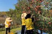 공주대 나누리봉사단, 사과농가 일손돕기에 나서