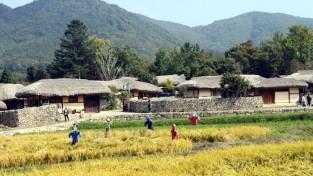 [포토] 2019 아산 외암민속마을 짚풀문화제 풍경