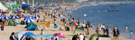 도내 대천해수욕장 등 33개 해수욕장 수질 '안전'